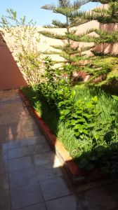photo annonce For sale House  Agadir Morrocco